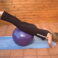 Pilates on the Ball: The World's Most Popular Workout Using the Exercise Ball (Paperback)